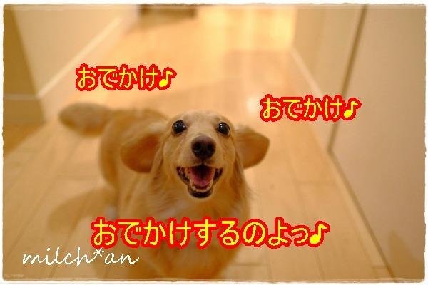 b0115642_1828879.jpg