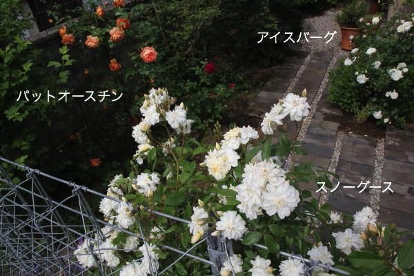 f0160554_2134512.jpg