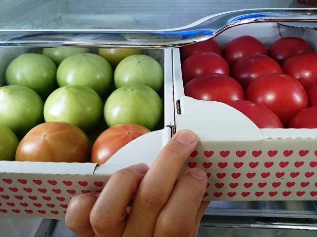 赤トマト、青トマト♪_e0167593_1594775.jpg