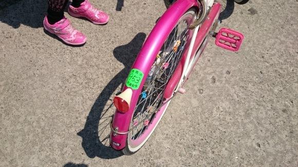 苺梨杏に自転車の合格証届く_f0150893_11245197.jpg