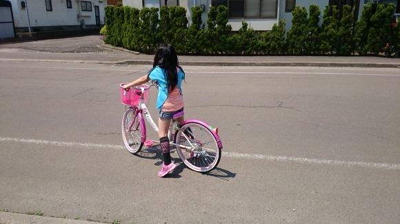 苺梨杏に自転車の合格証届く_f0150893_11253311.jpg
