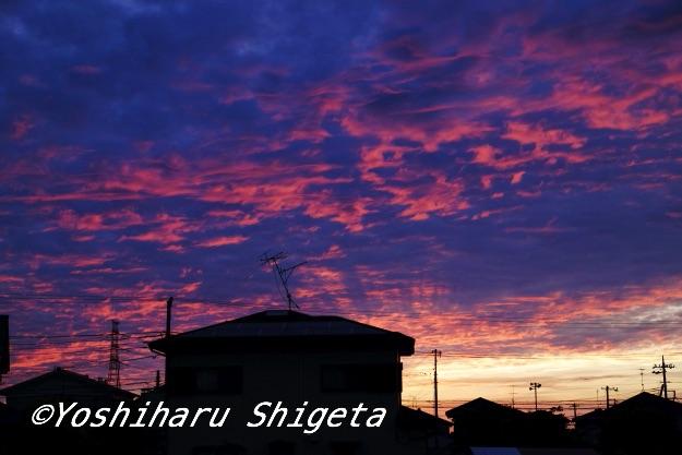 〜暮れなずむ町の〜_c0152400_842424.jpg