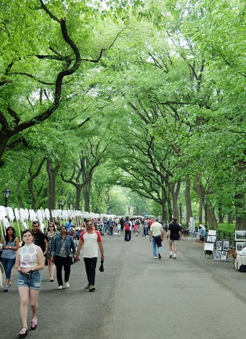 新緑のセントラルパークから並木道と芝生広場_b0007805_18475715.jpg