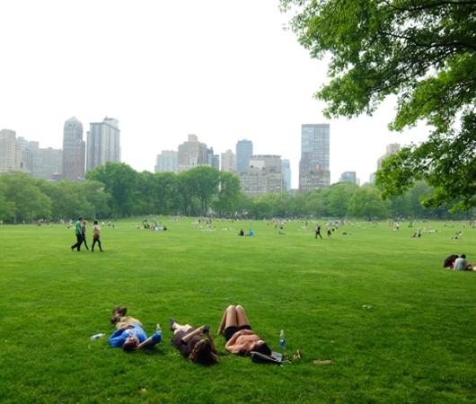 新緑のセントラルパークから並木道と芝生広場_b0007805_1849463.jpg