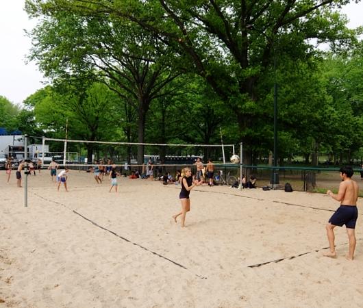 新緑のセントラルパークから並木道と芝生広場_b0007805_18532193.jpg