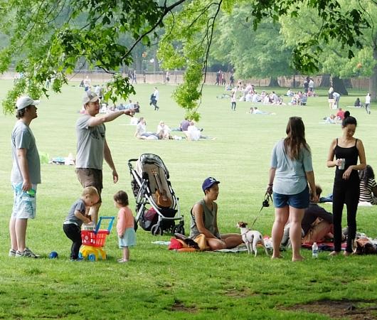 新緑のセントラルパークから並木道と芝生広場_b0007805_19245662.jpg