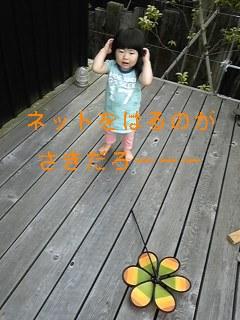 f0148927_8101136.jpg