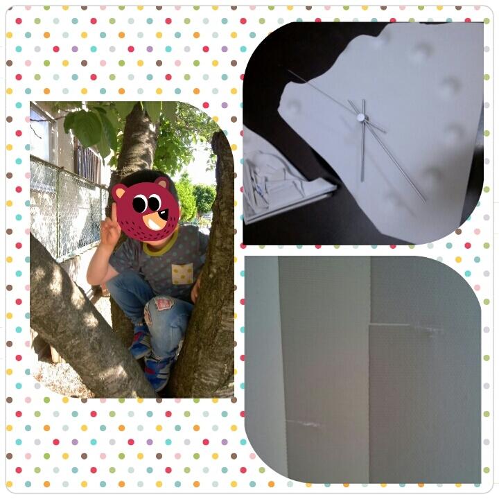 b0079436_08345832.jpg