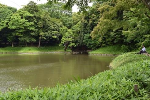 小石川後楽園 Koishikawa Korakuen Garden_c0160745_15083636.jpg