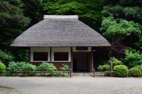 小石川後楽園 Koishikawa Korakuen Garden_c0160745_15101224.jpg
