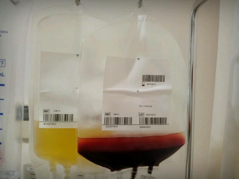 兄・その9(末梢血幹細胞採取二日目)_c0369059_13123187.jpg