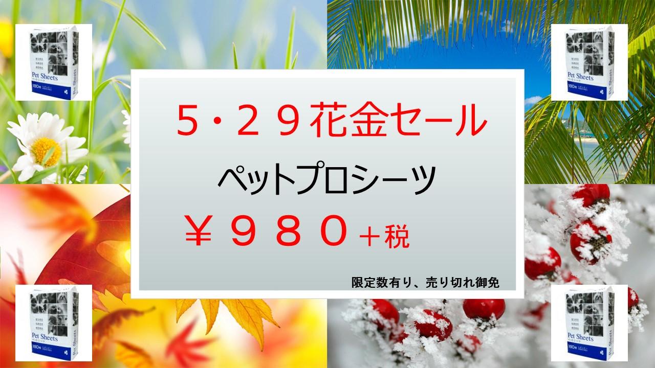 20150525 花金セール&イベント告知_e0181866_1724493.jpg