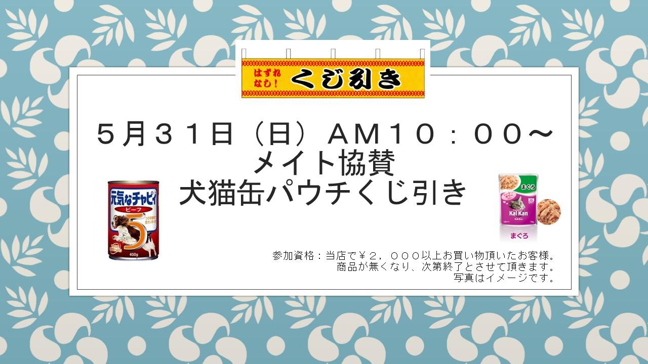 20150525 花金セール&イベント告知_e0181866_17265569.jpg
