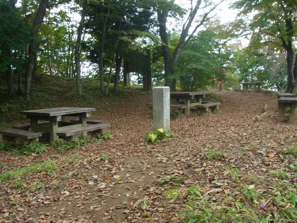 2014/10/12 笹尾根縦走 06_d0233770_14454150.jpg