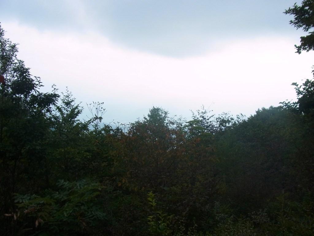 2014/10/12 笹尾根縦走 06_d0233770_1494969.jpg