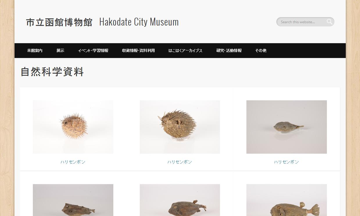 コラムリレー(第41回) 旧函館博物館ともう一つの明治の名残り・旧博物場所蔵資料_f0228071_8193285.jpg