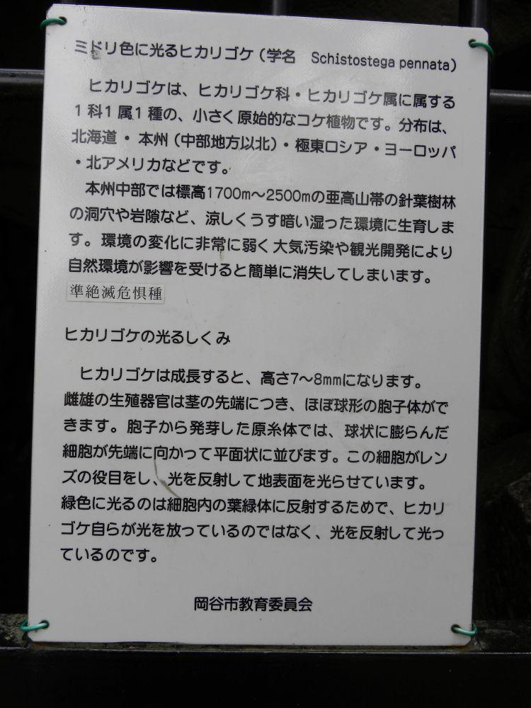 運動不足の解消(カロウト石古墳)・・・_b0329588_14073332.jpg
