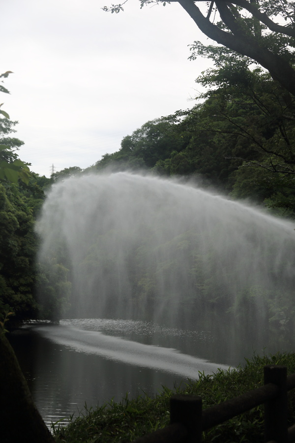 放水!!_b0275998_1053661.jpg