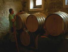 Poggio Scalette ワイン作り_a0112221_113074.jpg