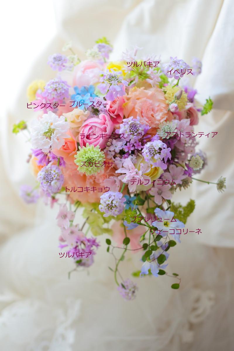 新郎新婦様からのメール ホテル日航東京さまへ 祈りが魔法になる一日に_a0042928_22135167.jpg