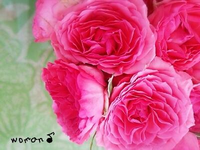 美魔女の走り、西太后に見る薔薇美容_c0296630_2123818.jpg