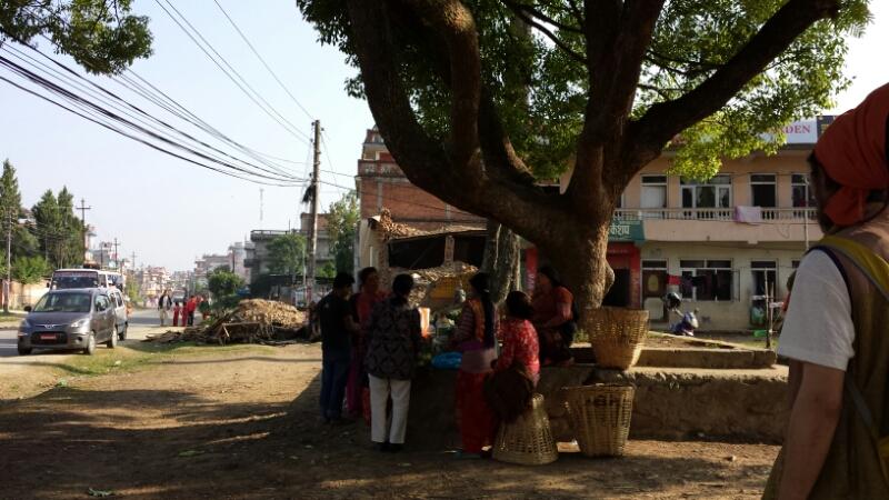ネパール報告:2日目、山車_e0155231_12543013.jpg