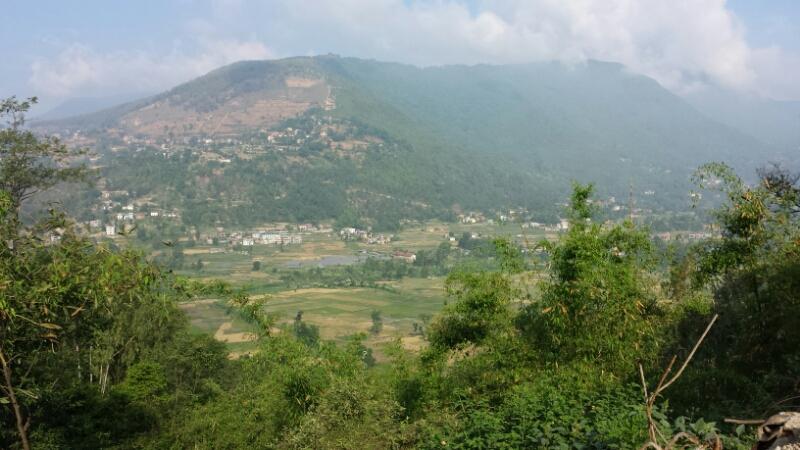 ネパール報告:2日目、山車_e0155231_12572659.jpg