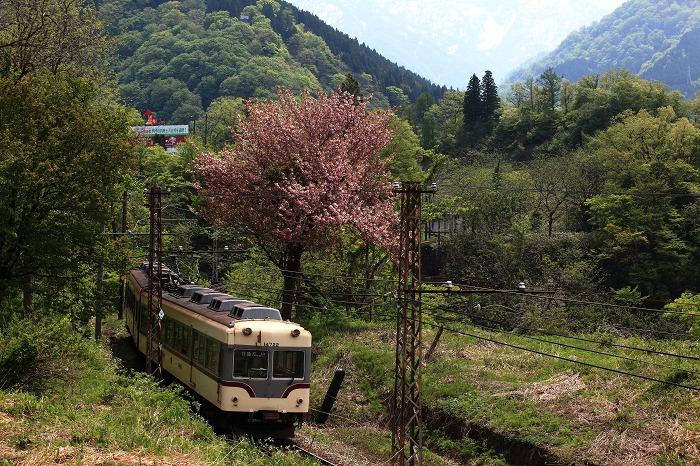 GW 富山への旅 8_a0294534_17501833.jpg