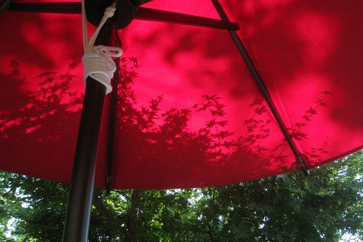 天空のカフェ 樹ガーデン /鎌倉_c0134734_21175135.jpg