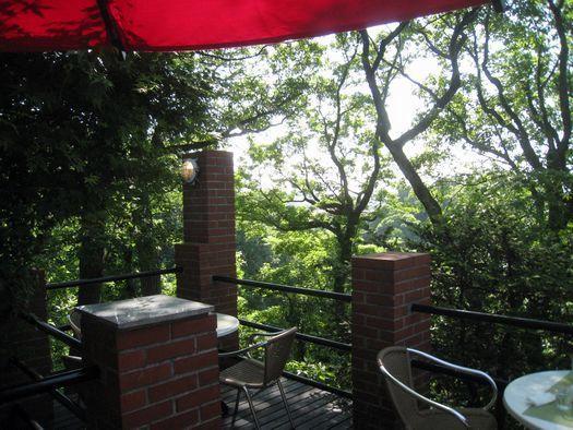 天空のカフェ 樹ガーデン /鎌倉_c0134734_21180623.jpg