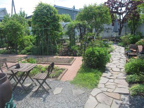 ポタジェの始まり~いんげん豆を蒔いた_a0279743_12542963.jpg