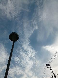 with dog   地震のあと 何度も空を見上げながら・・・_a0165160_07215537.jpg
