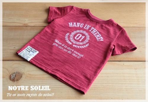 前回のTシャツの色と柄の組み合わせを変えてみました_c0289870_13224658.jpg