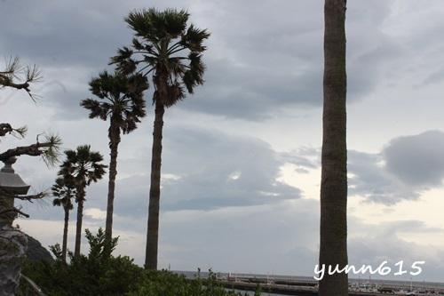 江ノ島_e0340671_06225996.jpg