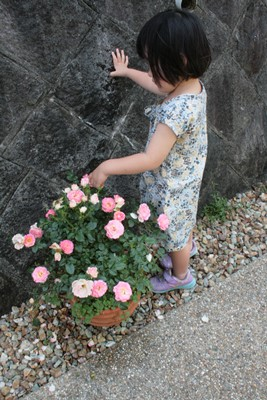 庭の花飾ろ♪_a0263675_0151788.jpg