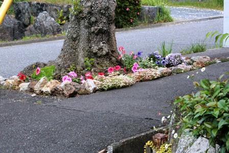 庭の花飾ろ♪_a0263675_23552762.jpg