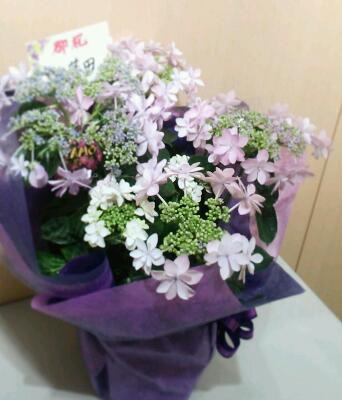 きれいなお花_f0043592_8272565.jpg