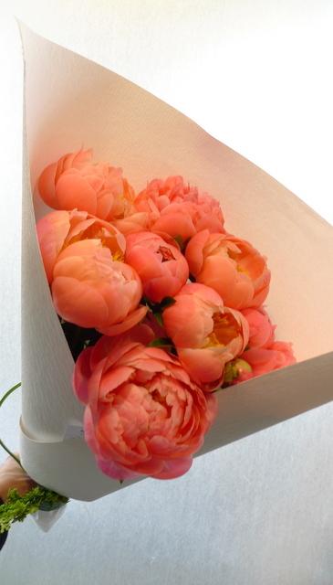 シャクヤクのみの花束。_b0171193_00191275.jpg