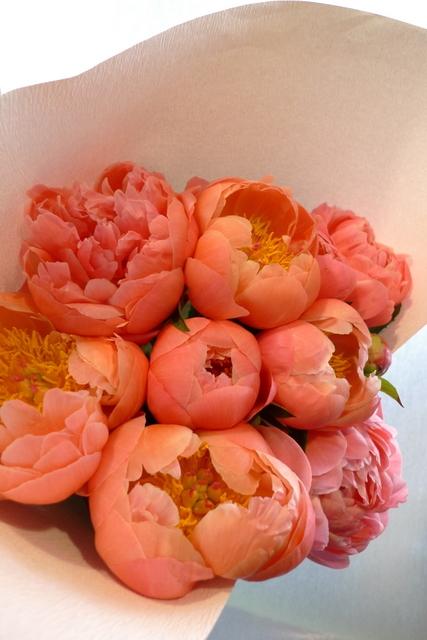 シャクヤクのみの花束。_b0171193_00191766.jpg