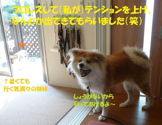 f0121712_161776.jpg