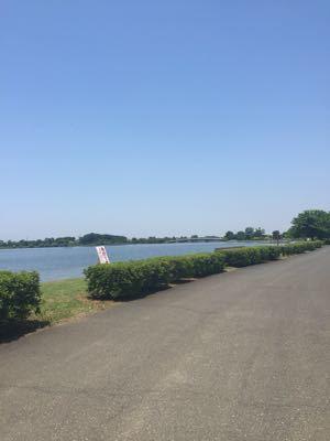 彩湖でランニング (60)_b0203925_18171226.jpg