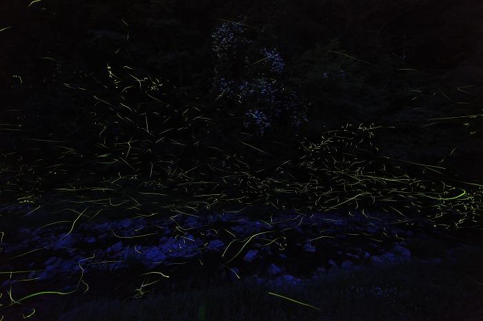 a0294534_19148.jpg