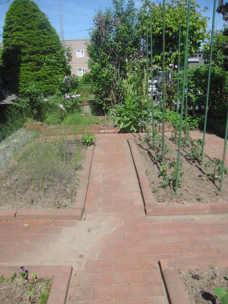 ポタジェに苗を全部植えた_a0279743_14474957.jpg