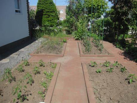 ポタジェに苗を全部植えた_a0279743_1448579.jpg