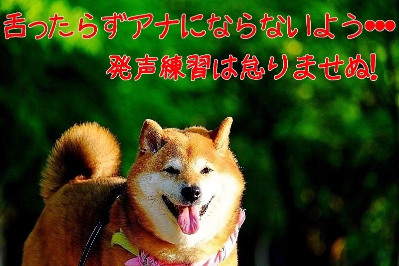 特訓_b0314043_21240992.jpg
