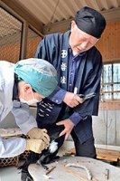 岐阜新聞 ウェブ 4月~5月「長良川」_f0197754_0491281.jpg