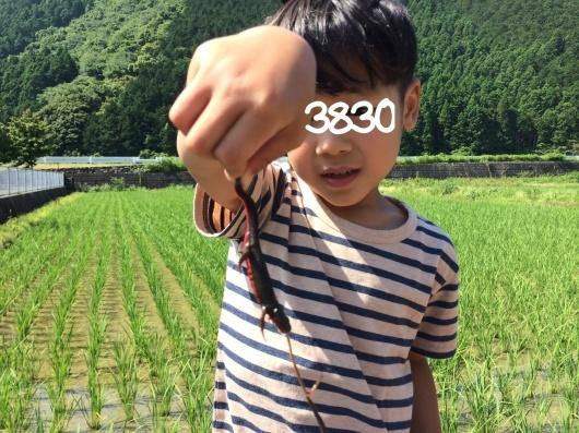 c0269855_20005079.jpg