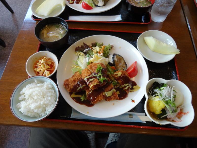 西本クリニック通院 & 夏野菜にネット張り_c0108460_21120928.jpg