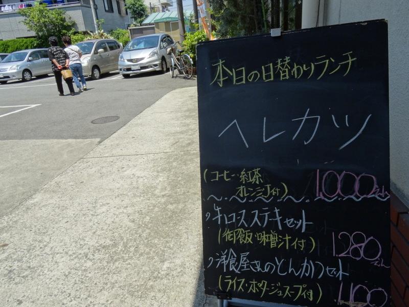 西本クリニック通院 & 夏野菜にネット張り_c0108460_21121225.jpg