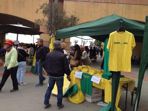 モンテロッソのレモン祭り_a0136671_1259103.jpg